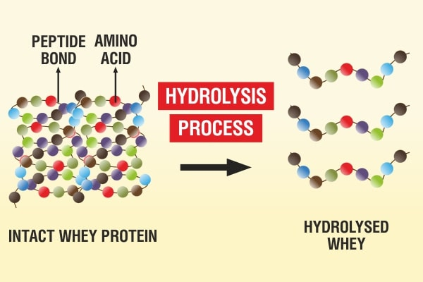 Các phương pháp thủy phân protein trong công nghệ thực phẩm bao gồm: thủy phân bằng hóa học (acid, kiềm), thủy phân bằng sinh học